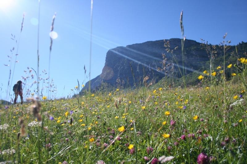 Klettersteig Gerlossteinwand : Gerlossteinwand klettersteig hike fly nova mentor light